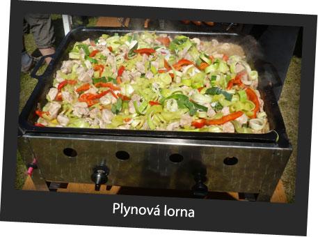 plynova_lorna